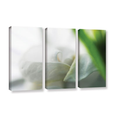 Brushstone White Petal 3-pc. Gallery Wrapped Canvas Wall Art