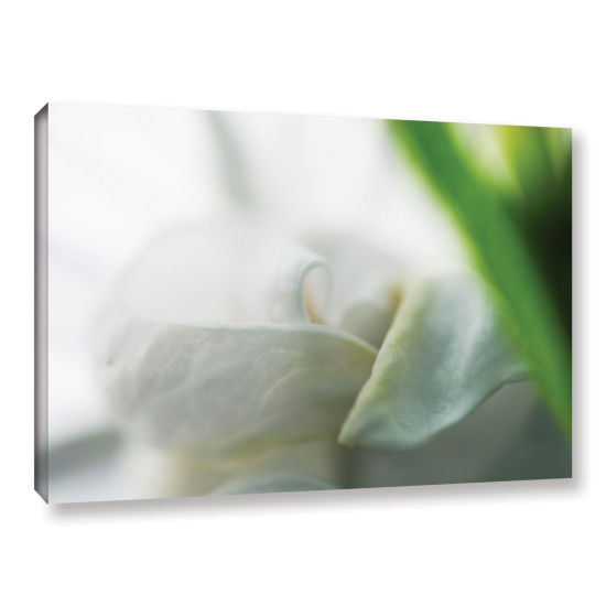Brushstone White Petal Gallery Wrapped Canvas WallArt