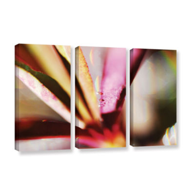 Brushstone One Among 3-pc. Gallery Wrapped CanvasWall Art