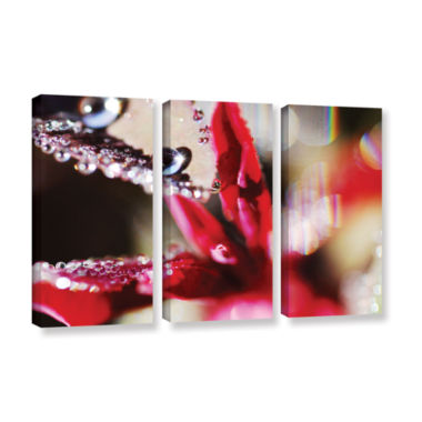Brushstone Reaching For Raindrops 3-pc. Gallery Wrapped Canvas Wall Art