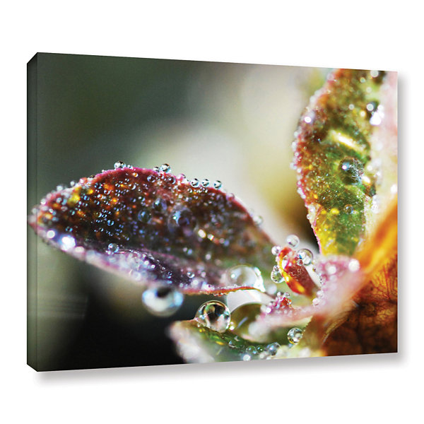 Brushstone Morning Rain In Stems Gallery Wrapped Canvas Wall Art