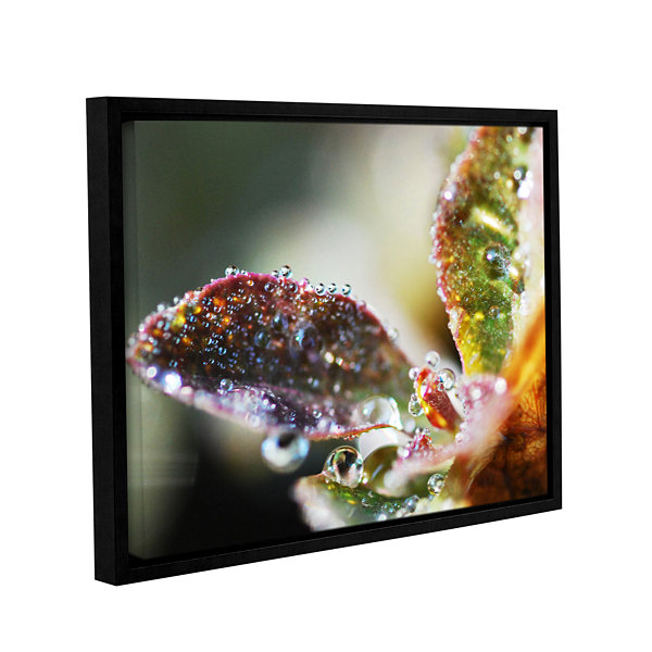Brushstone Morning Rain In Stems Gallery Wrapped Floater-Framed Canvas Wall Art