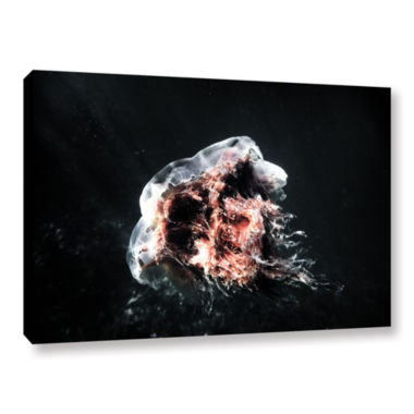 Brushstone Lion's Mane Jellyfish Gallery Wrapped Canvas Wall Art