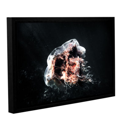 Brushstone Lion's Mane Jellyfish Gallery Wrapped Floater-Framed Canvas Wall Art
