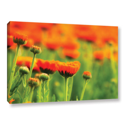 Brushstone Marigolds Gallery Wrapped Canvas Wall Art