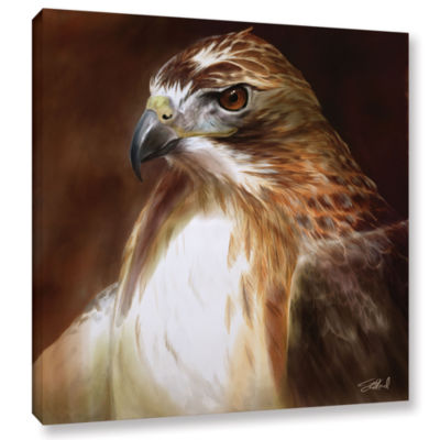 Brushstone Red-Tailed Hawk Gallery Wrapped CanvasWall Art