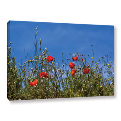 Brushstone Poppies On Bluesky Gallery Wrapped Canvas Wall Art