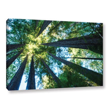 Brushstone Redwood Fusion Gallery Wrapped Canvas Wall Art