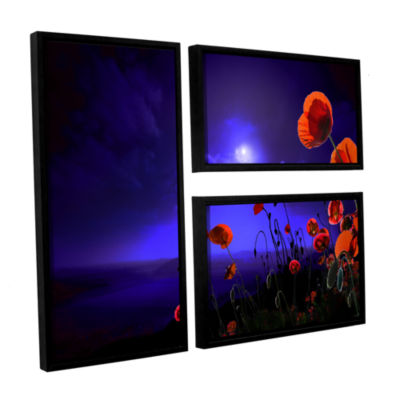 Brushstone Poppies Blue 3-pc. Flag Floater FramedCanvas Wall Art