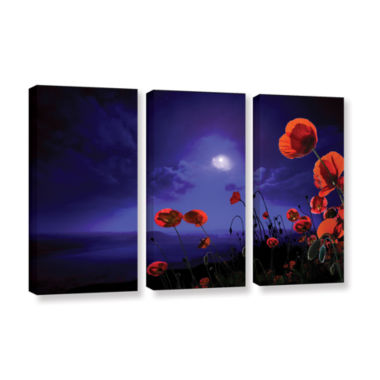 Brushstone Poppies Blue 3-pc. Gallery Wrapped Canvas Wall Art
