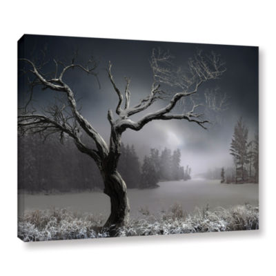 Brushstone Winter Lake View Gallery Wrapped CanvasWall Art