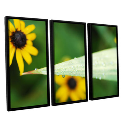Brushstone Black-eyed Susan Reflection 3-pc. Floater Framed Canvas Wall Art
