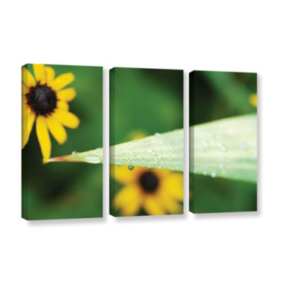 Black-eyed Susan Reflection 3-pc. Gallery WrappedCanvas Wall Art