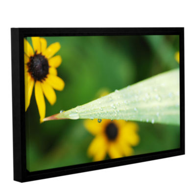 Black-eyed Susan Reflection Gallery Wrapped Floater-Framed Canvas Wall Art
