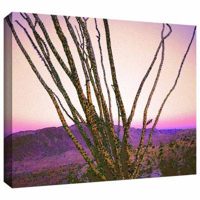 Borrego Desert Dawn Gallery Wrapped Canvas Wall Art