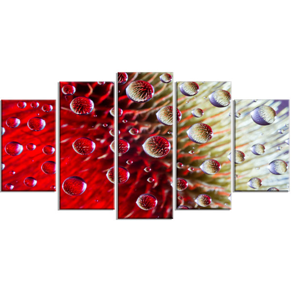 Designart Colorful Red Flower In Raindrops LargeFloral Wrapped Canvas Artwork - 5 Panels
