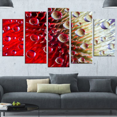 Designart Colorful Red Flower In Raindrops LargeFloral Canvas Artwork - 5 Panels