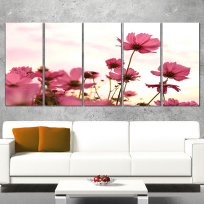 Designart Cosmos Flowers Meadow At Sunset FloralWrapped Canvas Art Print - 5 Panels