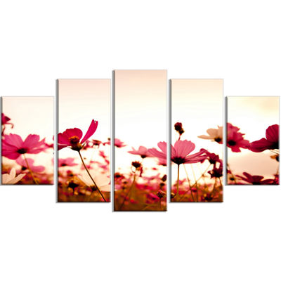 Designart Cosmos Flowers On Pink Background FloralWrapped Canvas Art Print - 5 Panels