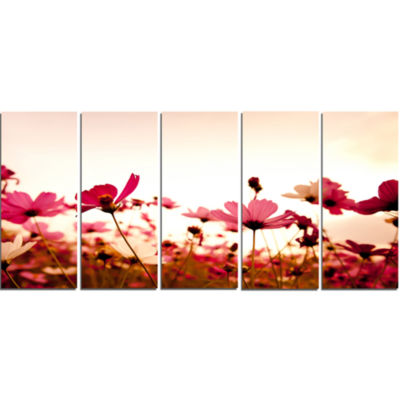 Cosmos Flowers On Pink Background Floral Canvas Art Print - 5 Panels