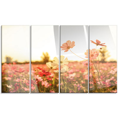 Designart Cosmos Flowers On Sunset Background Floral Canvas Art Print - 4 Panels
