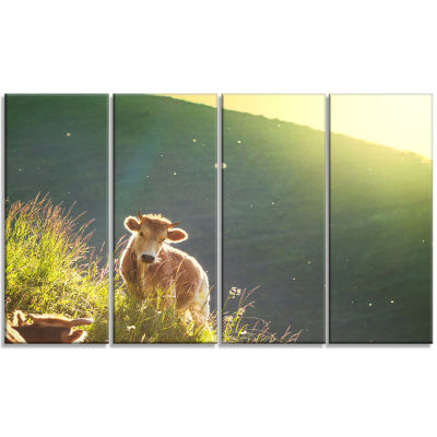 Cow Grazing On Meadow Evening Oversized LandscapeCanvas Art - 4 Panels