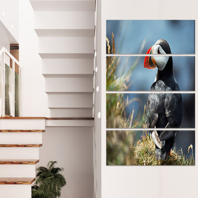 Designart Cute Puffin Relaxing Animal Art Painting- 4 Panels