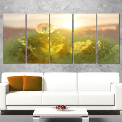Designart Dandelion Blooming Flower In Field Floral Wrapped Canvas Art Print - 5 Panels