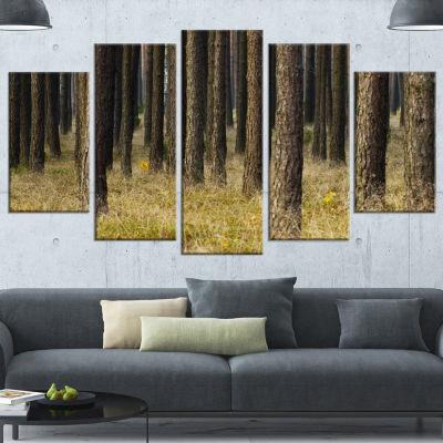 Design Art Dark Fall Forest With Green Grass Modern Forest Canvas Art - 5 Panels
