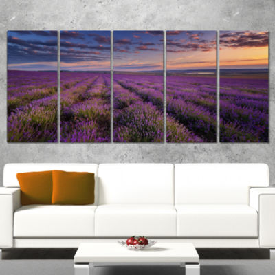 Designart Dark Lavender Field With Cloudy Sky Floral Wrapped Canvas Art Print - 5 Panels