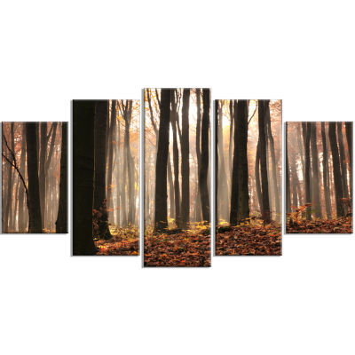 Dark Thick Woods In Fall Forest Modern Forest Wrapped Canvas Art - 5 Panels