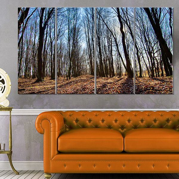 Designart Dark Trees In Forest At Sunrise ForestCanvas Art Print - 4 Panels