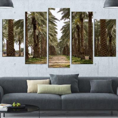 Designart Date Palm Plantation Photography ModernForest Canvas Art - 5 Panels