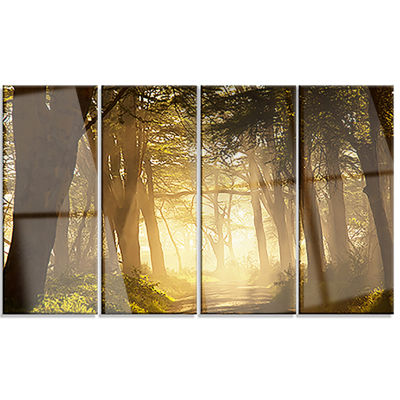 Deep Jungle With Foggy Sunlight Oversized Landscape Canvas Art - 4 Panels