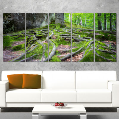 Designart Deep Moss Forest In Ukraine Landscape Canvas Art Print - 5 Panels