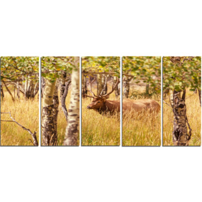 Deer In Thick Forest Grassland Oversized LandscapeCanvas Art - 5 Panels