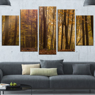 Designart Dense Forest In Rays Of Rising Sun Forest Wrapped Canvas Art Print - 5 Panels