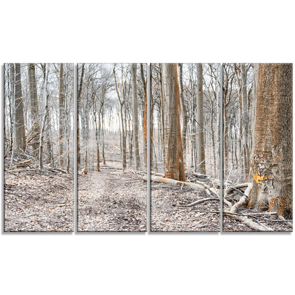 Design Art Dense Forest In The Winter PhotographyModern Forest Canvas Art - 4 Panels