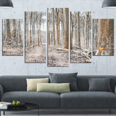 Designart Dense Forest In The Winter PhotographyModern Forest Wrapped Canvas Art - 5 Panels