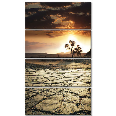 Desert Gopi Cracked Drought Land African LandscapeCanvas Art Print - 4 Panels