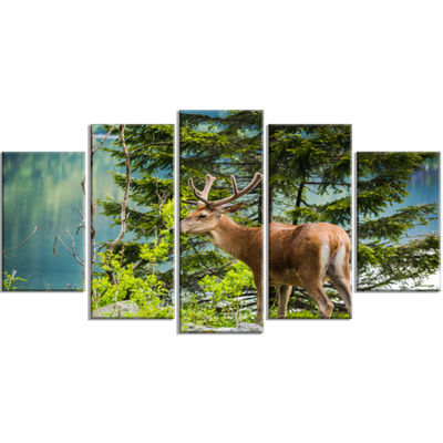 Designart Deer Stag Near The Lake Animal Art On Wrapped Canvas - 5 Panels