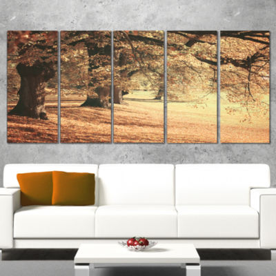 Designart Dreamy Imagery Of Autumn Forest Modern Forest Wrapped Canvas Art - 5 Panels