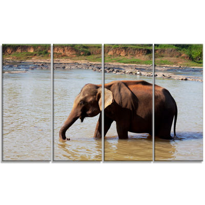 Designart Elephant In Water In Sri Lanka Extra Large AfricanCanvas Art Print - 4 Panels
