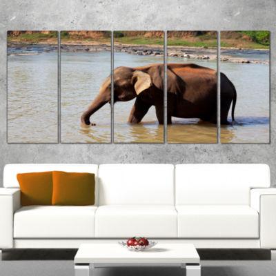 Designart Elephant In Water In Sri Lanka Extra Large AfricanWrapped Canvas Art Print - 5 Panels
