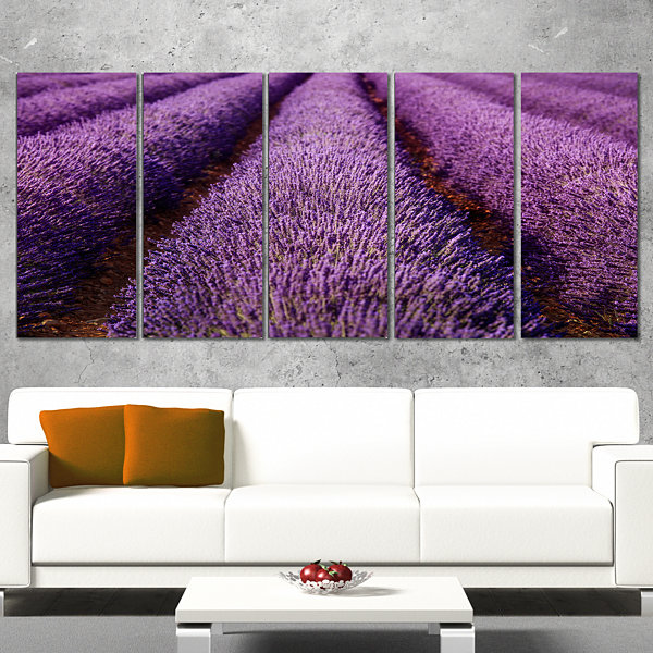 Endless Rows Of Lavender Field Oversized LandscapeWall Art Print - 5 Panels