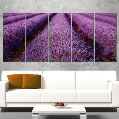 Designart Endless Rows Of Lavender Field OversizedLandscapeWall Art Print - 5 Panels