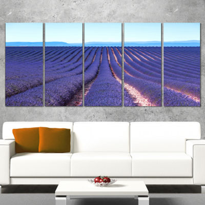 Designart Endless Rows Of Lavender Flowers FloralWrapped Canvas Art Print - 5 Panels