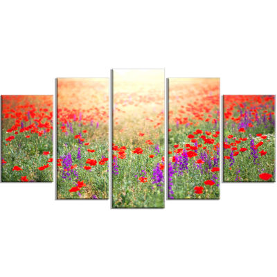 Expansive Poppy Field At Sunset Floral Wrapped Canvas Art Print - 5 Panels