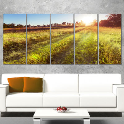 Designart Farm Road In Rural Meadow Landscape Wrapped CanvasArt Print - 5 Panels