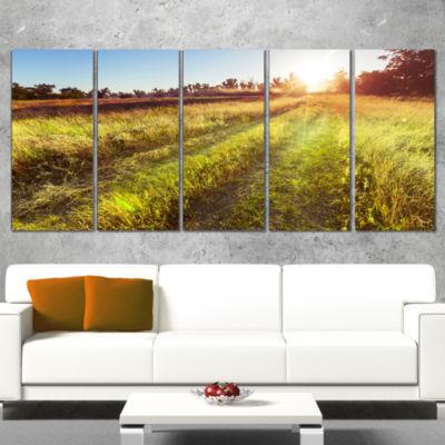 Designart Farm Road In Rural Meadow Landscape Canvas Art Print - 5 Panels